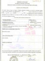 licencia-amp
